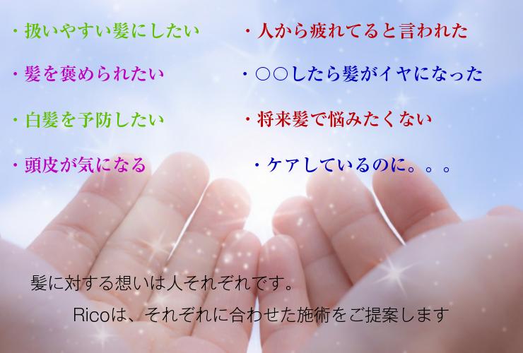 design (17)