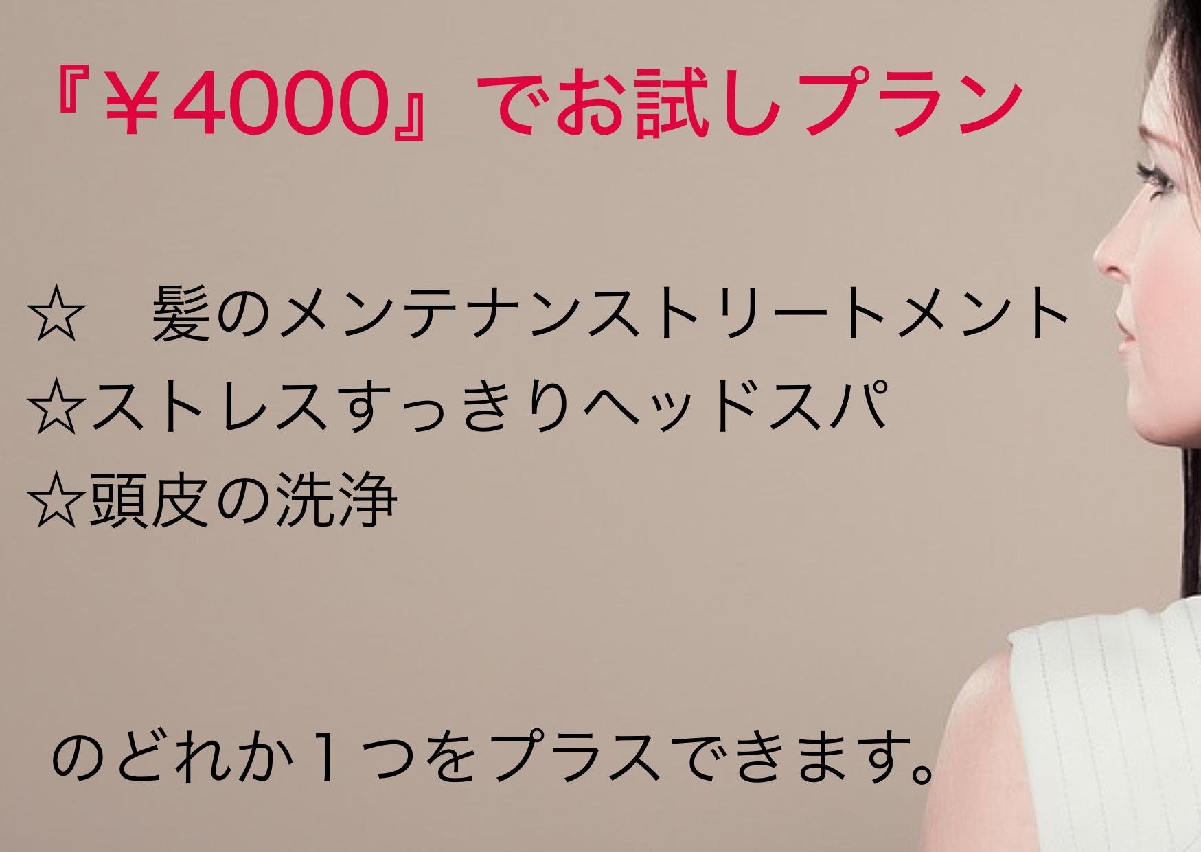 4000メニュー